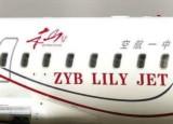 """赵本山私人飞机印着""""本山""""号 造价达2亿"""