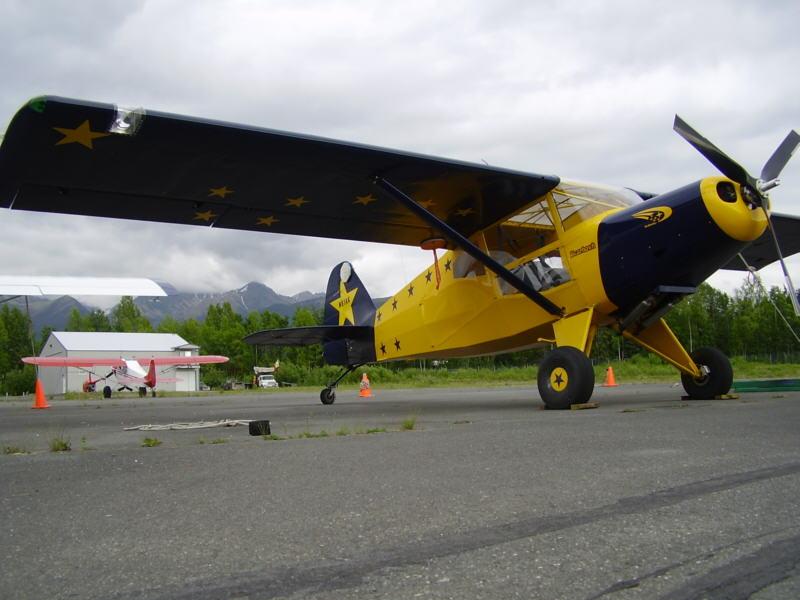 bearhawk机身外观_1