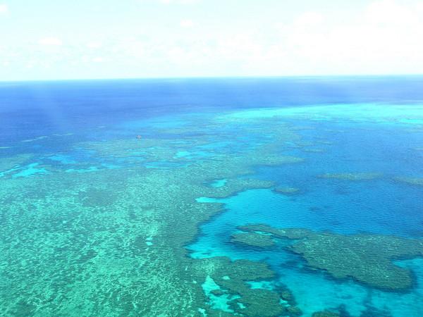 澳洲游:185美刀乘水上飞机俯瞰大堡礁(2)