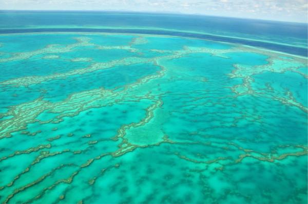 澳洲游:185美刀乘水上飞机俯瞰大堡礁(4)